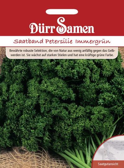 Petersilie Immergrün Saatband | Petersiliensamen von Dürr Samen