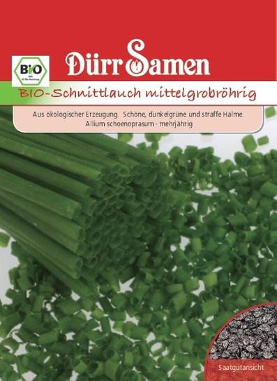 Schnittlauch mittelgrobröhrig | Bio-Schnittlauchsamen von Dürr Samen
