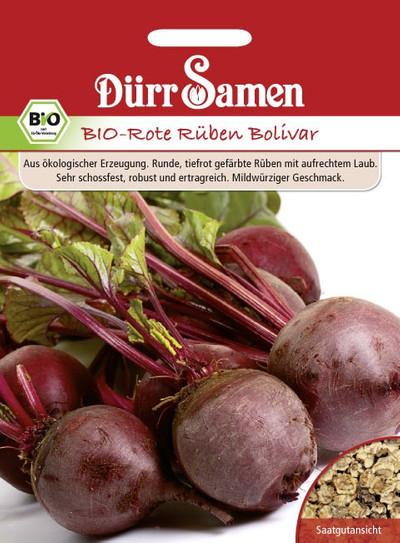 Rote Rübe Bolivar | Bio-Rübensamen von Dürr Samen