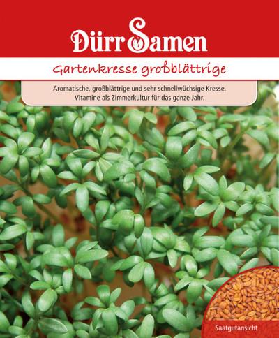 Gartenkresse großblättrig 250 g | Gartenkressesamen von Dürr Samen