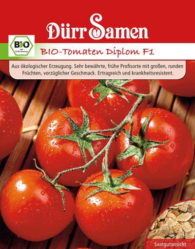 Tomate Diplom F1 | Bio-Tomatensamen von Dürr Samen