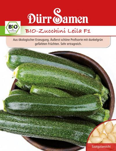 Zucchini Leila F1 | Bio-Zucchinisamen von Dürr Samen