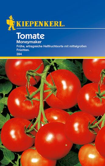Tomate Moneymaker | Tomatensamen von Kiepenkerl