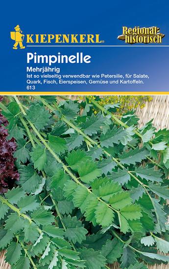Pimpinelle | Pimpinellensamen von Kiepenkerl