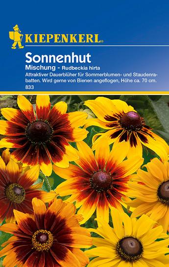 Sonnenhut Mischung | Sonnenhutsamen von Kiepenkerl