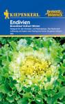 Endivie Breedblad Volhart Winter | Endiviensalatsamen von Kiepenkerl