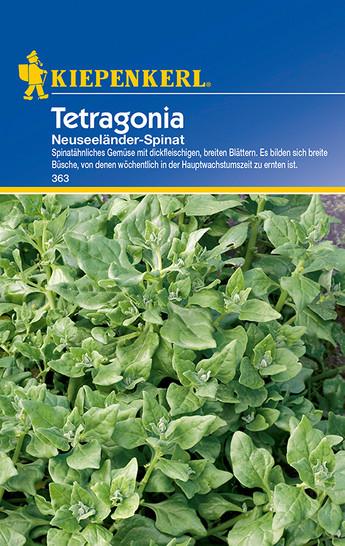 Tetragonia Neuseeländer-Spinat | Neuseeländer-Spinatsamen von Kiepenkerl