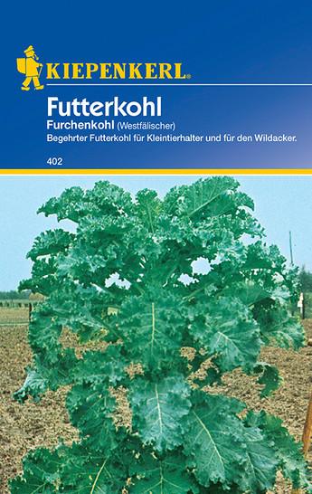 Kohlsamen - Futterkohl Westfälischer Furchenkohl von Kiepenkerl
