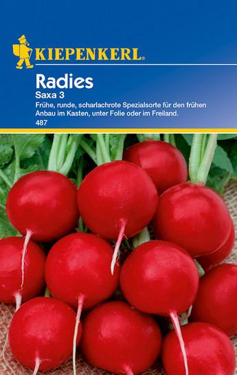 Radies Saxa 3 | Radieschensamen von Kiepenkerl