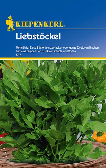 Maggikraut Liebstöckel | Maggikrautsamen von Kiepenkerl