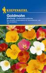 Goldmohn Mischung | Goldmohnsamen von Kiepenkerl