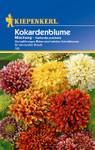 Kokardenblume Mischung von Kiepenkerl