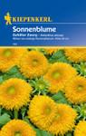Sonnenblume Gefüllter Zwerg | Sonnenblumensamen von Kiepenkerl