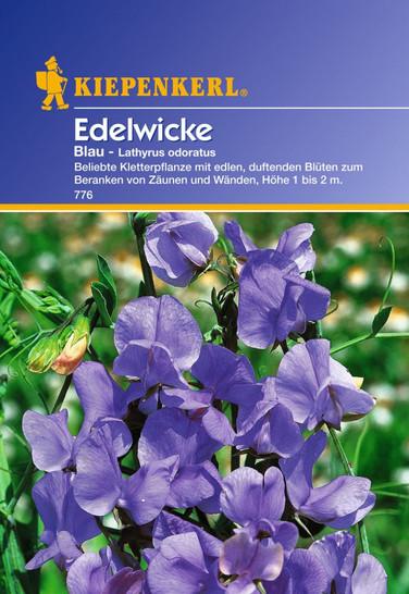 Edelwicke Blau | Edelwickensamen von Kiepenkerl