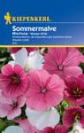 Sommermalve Mischung | Sommermalvensamen von Kiepenkerl
