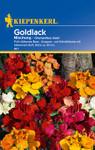 Cheiranthus Goldlack Mix von Kiepenkerl [MHD 01/2020]