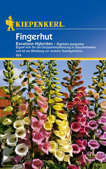 Fingerhut Excelsior-Hybriden | Fingerhutsamen von Kiepenkerl