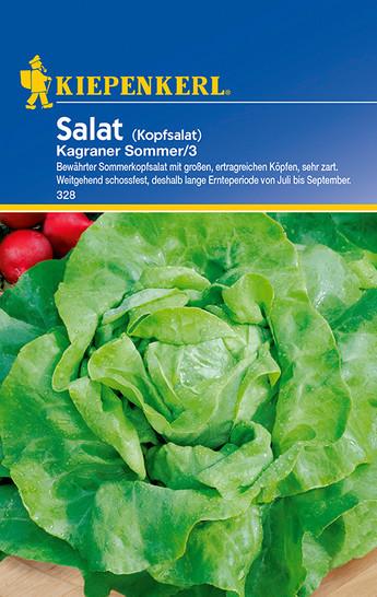 Kopfsalat Kagraner Sommer / 3 | Kopfsalatsamen von Kiepenkerl