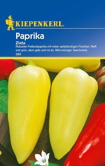 Paprika Zlata   Paprikasamen von Kiepenkerl
