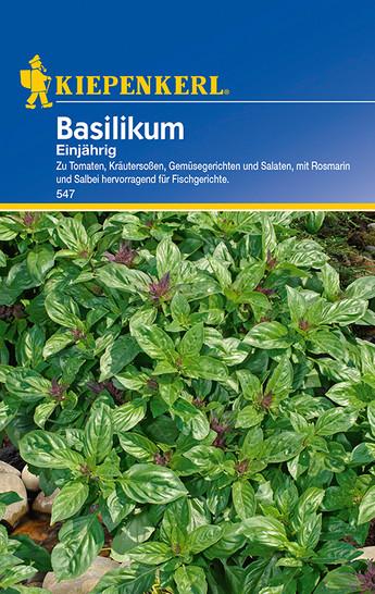 Basilikum Einjährig | Basilikumsamen von Kiepenkerl