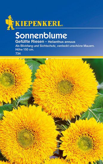 Sonnenblume Gefüllte Riesen | Sonnenblumensamen von Kiepenkerl