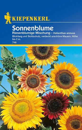 Sonnenblume Riesenblumige Mischung | Sonnenblumensamen von Kiepenkerl