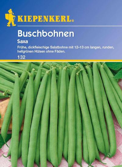 Buschbohne Saxa | Buschbohnensamen von Kiepenkerl