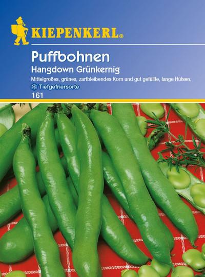 Bohnen - PuffBohnen - Hangdown Grünkernig von Kiepenkerl