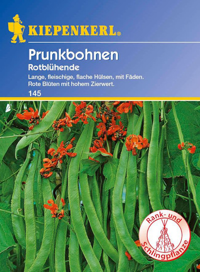 Bohnen - PrunkBohnen - Rotblühende von Kiepenkerl