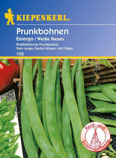 Prunkbohne Emergo / Weiße Riesen | Prunkbohnensamen von Kiepenkerl