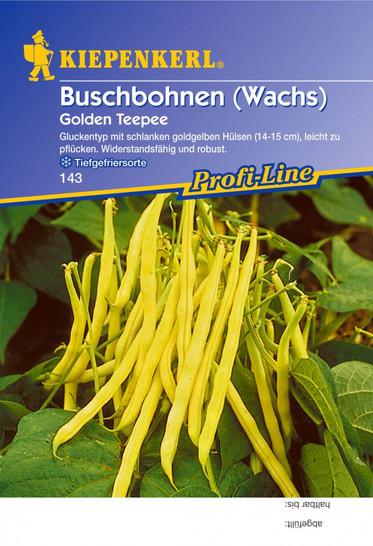 Buschbohne Golden Teepee | Buschbohnensamen von Kiepenkerl