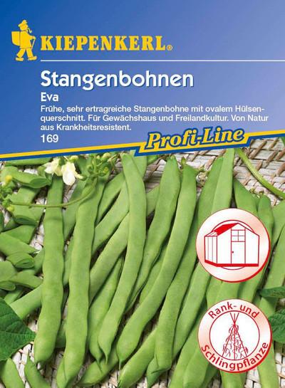 Stangenbohne Eva | Stangenbohnensamen von Kiepenkerl