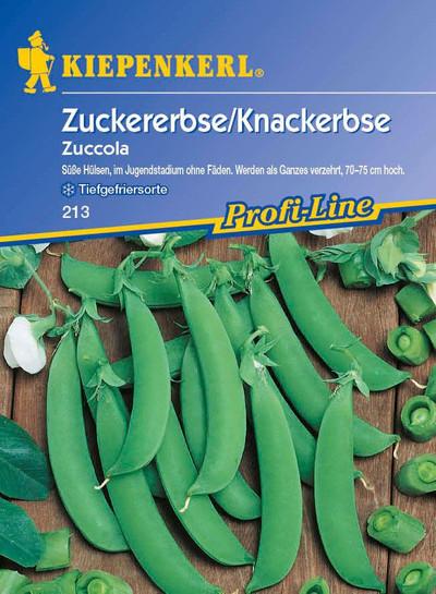 Erbsen - ZuckerErbsen, Knackererbse Zuccola von Kiepenkerl