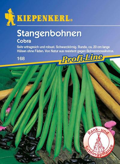 Stangebohne Cobra | Stangebohnensamen von Kiepenkerl [MHD 01/2020]