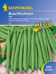 Buschbohne Saxa 200 g | Buschbohnensamen von Kiepenkerl