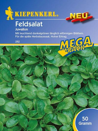 Salatsamen - Feldsalat Juwallon von Kiepenkerl