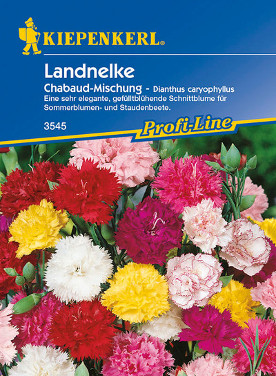 Landnelke  Chabaud-Mischung von Kiepenkerl [MHD 01/2020]