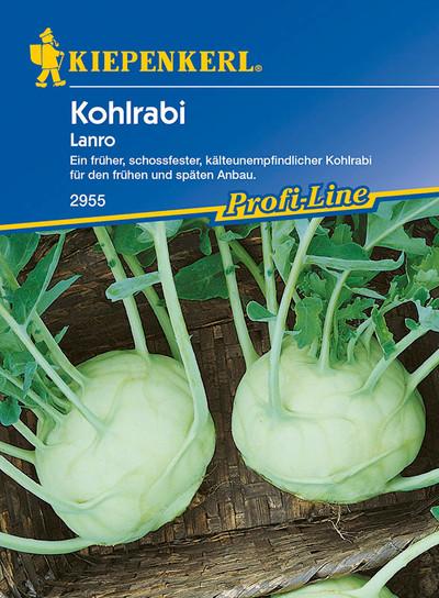 Kohlsamen - Kohlrabi Lanro weiß von Kiepenkerl [MHD 01/2020]