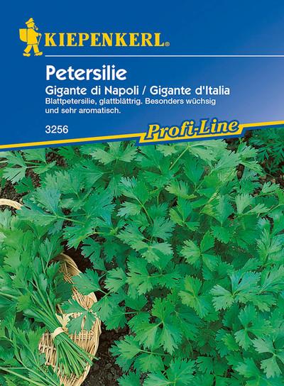 Petersilie Gigante d'Italia | Petersiliensamen von Kiepenkerl