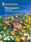 Blütenteppich Mischung | Saatscheibe von Kiepenkerl