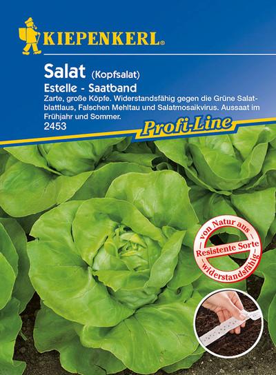 Salatsamen - Kopfsalat Estelle Saatband von Kiepenkerl [MHD 01/2020]