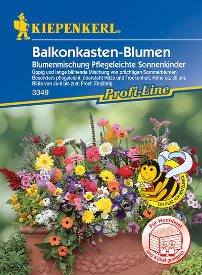 Balkonkasten-Blumen Blumenmischung Pflegeleichte Sonnenkinder | Balkonkastennsamen von Kiepenkerl