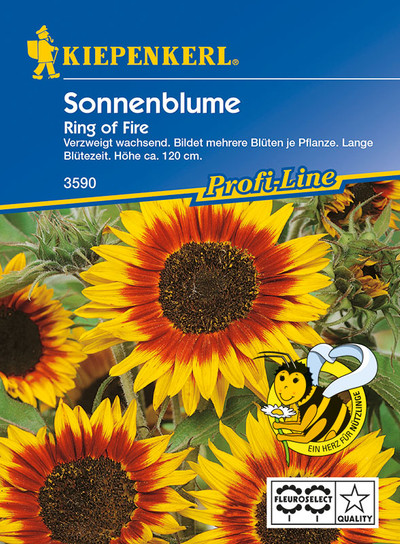 Sonnenblume Ring of Fire | Sonnenblumensamen von Kiepenkerl