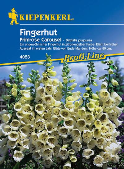 Fingerhut Primrose Caroussel   Fingerhutsamen von Kiepenkerl