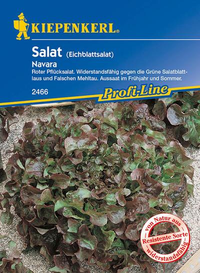 Roter Eichblattsalat Navara | Eichblattsalatsamen von Kiepenkerl