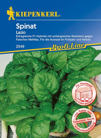 Spinatsamen - Spinat Lazio von Kiepenkerl