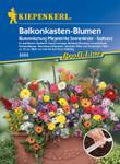 Balkonkasten-Blumen Blumenmischung Pflegeleichte Sonnenkinder (Saatband) | Blumenmischungsamen von Kiepenkerl