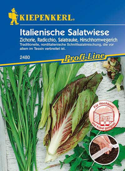 Italienische Salatwiese (Saatband) | Salatsamen von Kiepenkerl