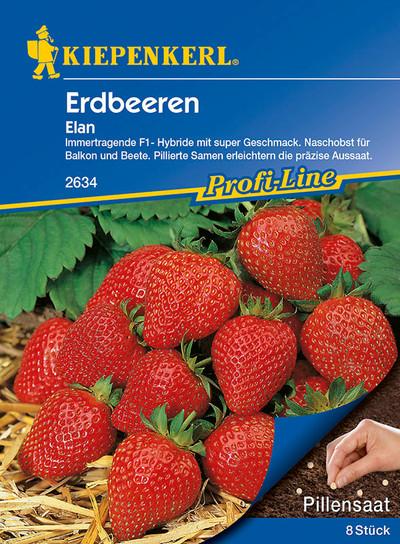 Erdbeere Elan (Pillensaat) | Erdbeersamen von Kiepenkerl