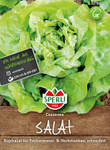 Kopfsalat Casanova | Kopfsalatsamen von Sperli-Samen
